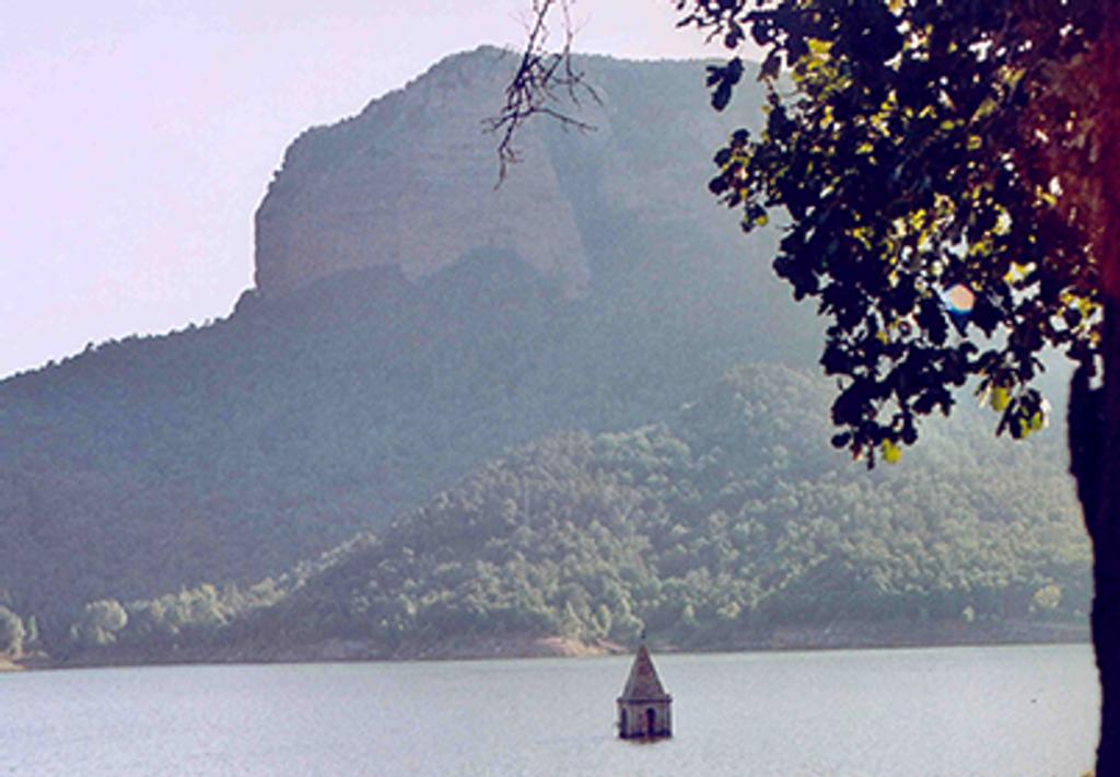 Camí-Oliba