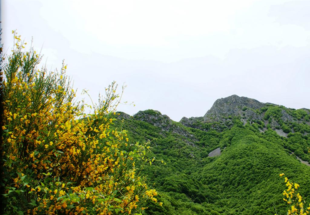 Serra-de-l.Arca