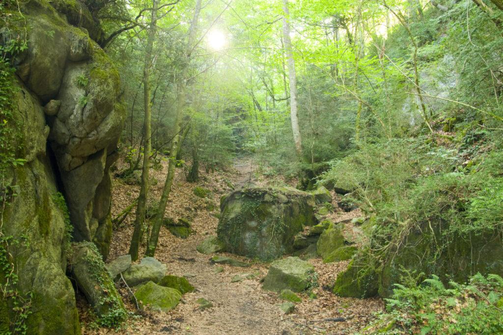 Ruta de la Serra de Bufadors