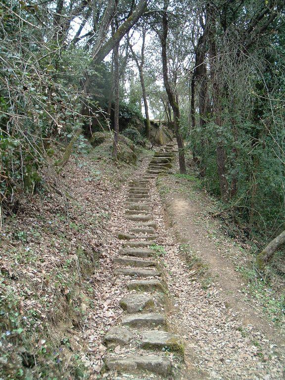 Les escales de Foquers (Folgueroles)